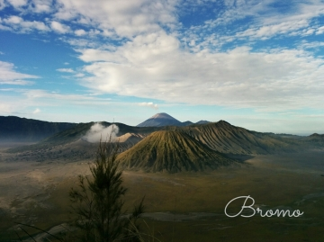 The Dusty Sneakers I Bromo 1